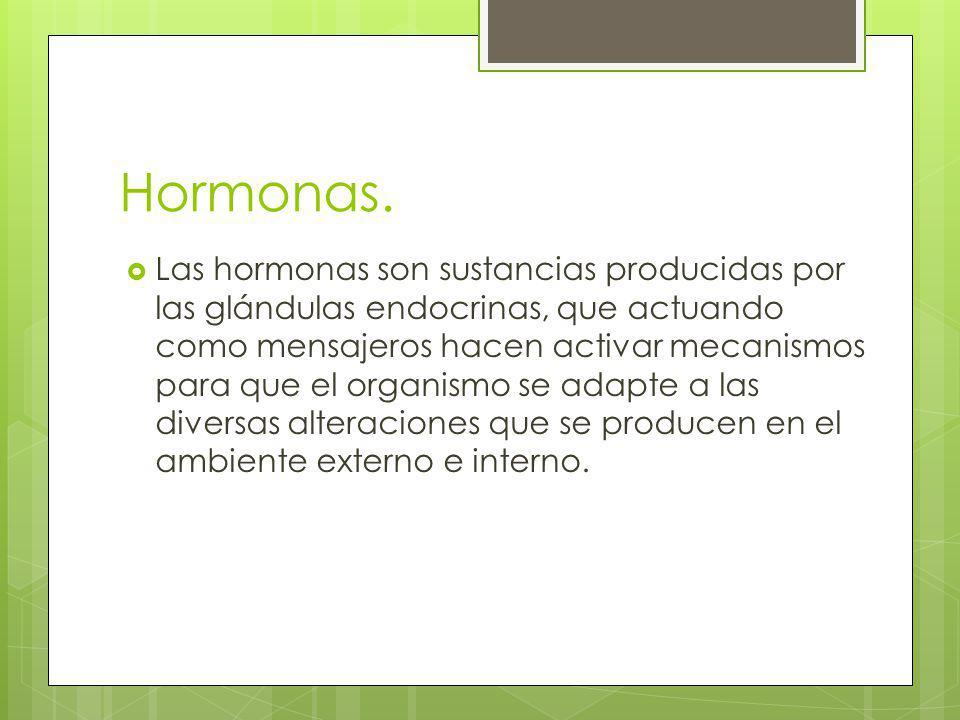 Hormonas. Las hormonas son sustancias producidas por las glándulas endocrinas, que actuando como mensajeros hacen activar mecanismos para que el organ