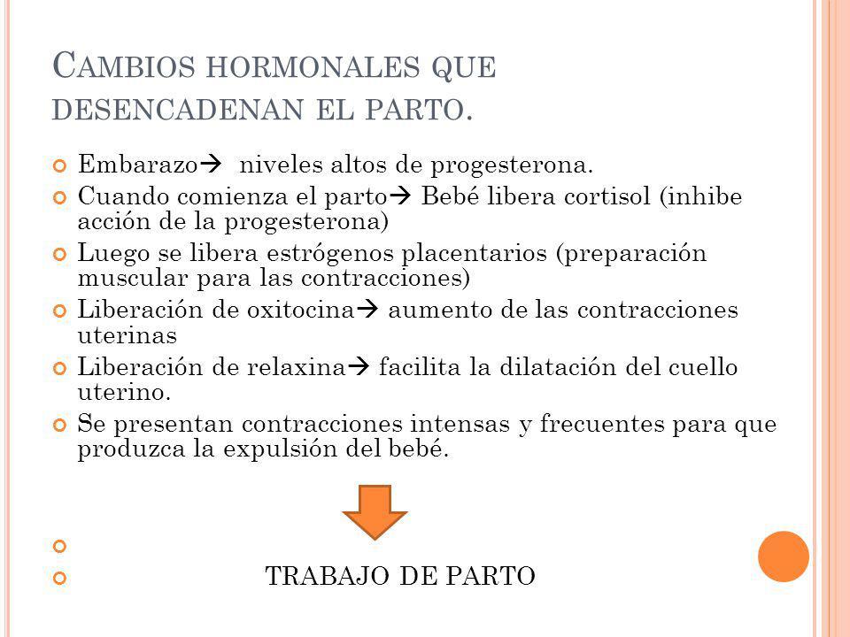C AMBIOS HORMONALES QUE DESENCADENAN EL PARTO. Embarazo niveles altos de progesterona. Cuando comienza el parto Bebé libera cortisol (inhibe acción de