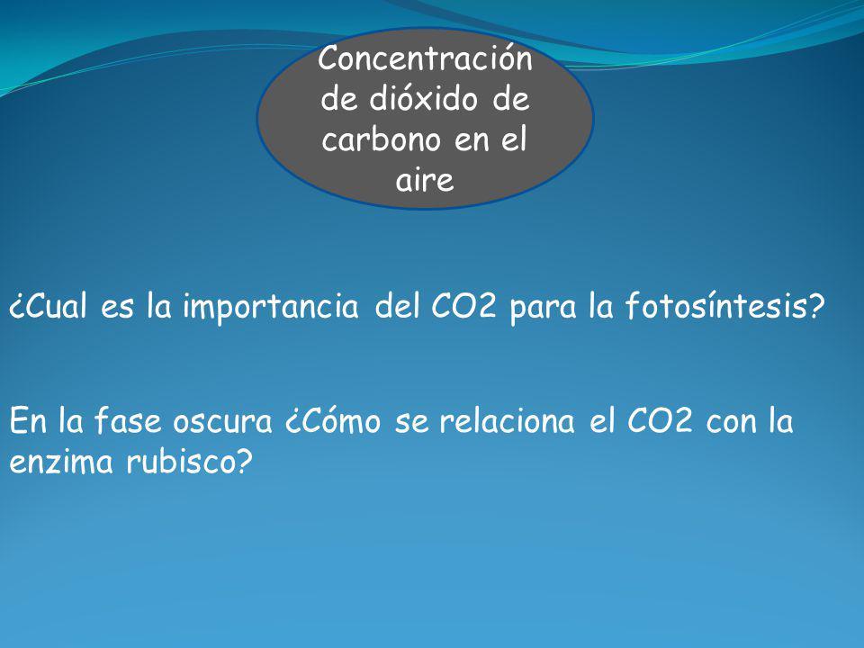Concentración de dióxido de carbono en el aire ¿Cual es la importancia del CO2 para la fotosíntesis? En la fase oscura ¿Cómo se relaciona el CO2 con l