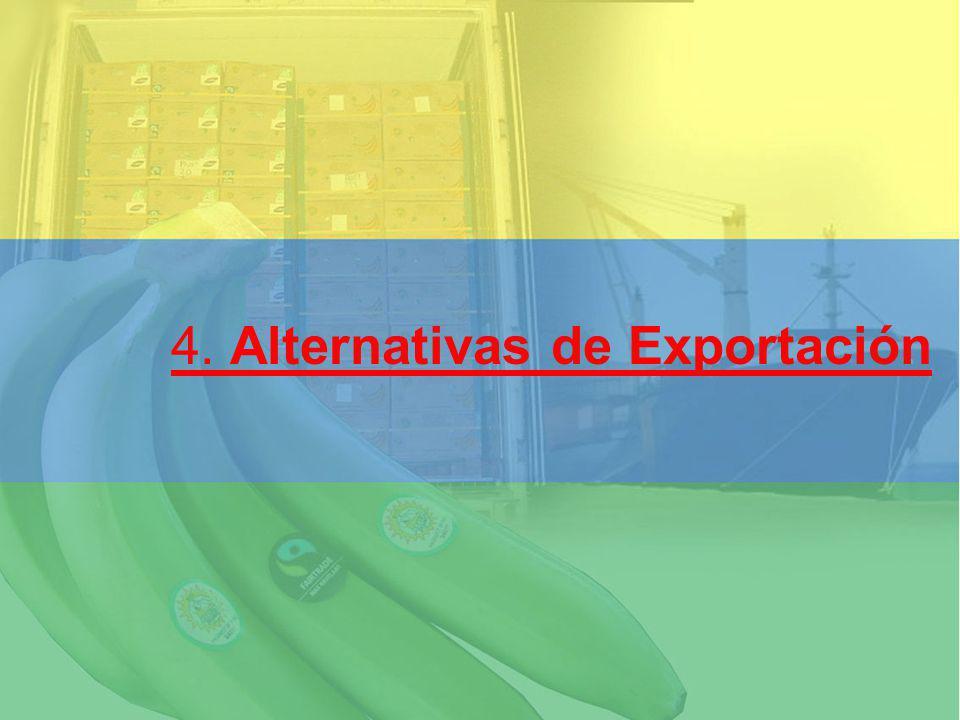 4. Alternativas de Exportación