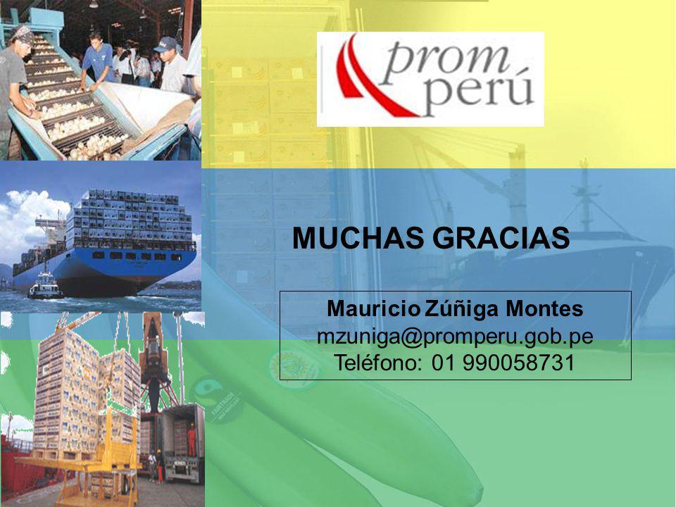 Mauricio Zúñiga Montes mzuniga@promperu.gob.pe Teléfono: 01 990058731 MUCHAS GRACIAS