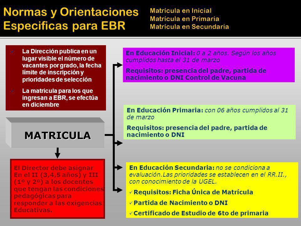 MATRICULA En Educación Inicial: 0 a 2 años. Según los años cumplidos hasta el 31 de marzo Requisitos: presencia del padre, partida de nacimiento o DNI