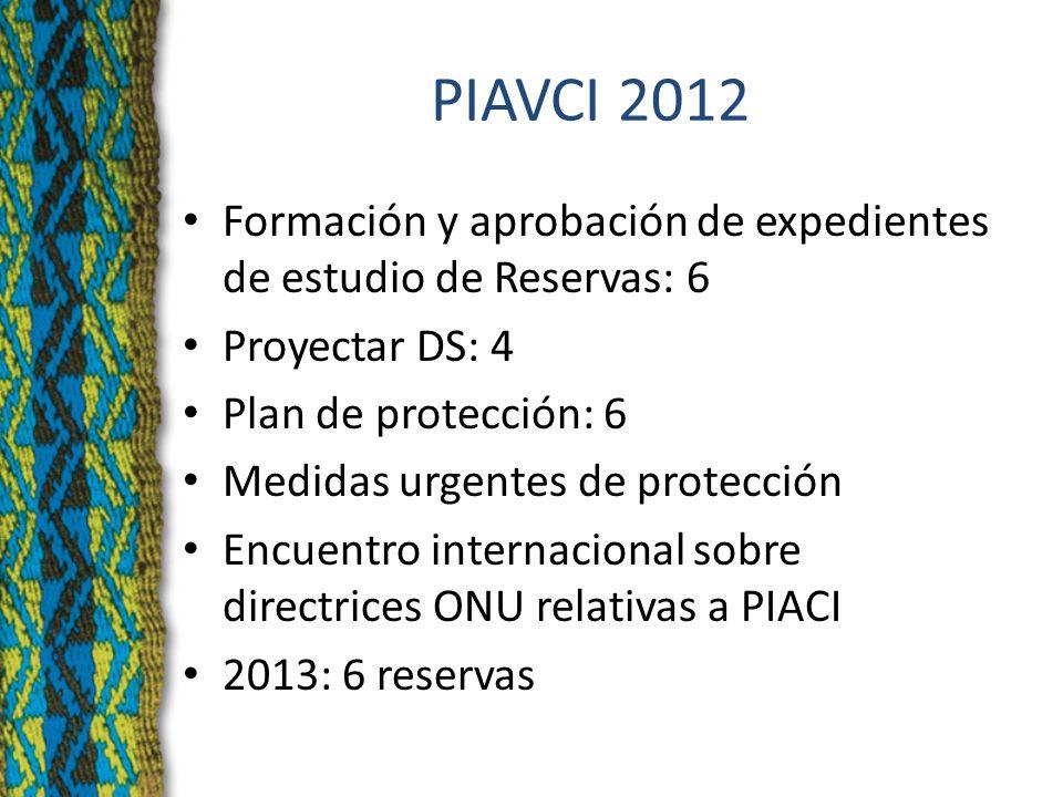PIAVCI 2012 Formación y aprobación de expedientes de estudio de Reservas: 6 Proyectar DS: 4 Plan de protección: 6 Medidas urgentes de protección Encuentro internacional sobre directrices ONU relativas a PIACI 2013: 6 reservas