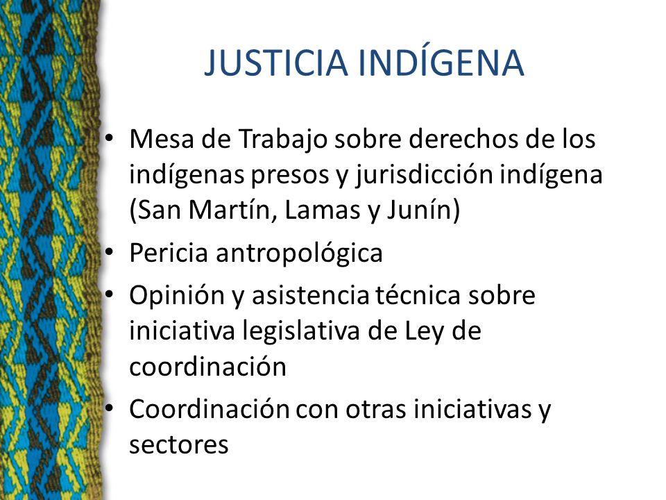 JUSTICIA INDÍGENA Mesa de Trabajo sobre derechos de los indígenas presos y jurisdicción indígena (San Martín, Lamas y Junín) Pericia antropológica Opinión y asistencia técnica sobre iniciativa legislativa de Ley de coordinación Coordinación con otras iniciativas y sectores