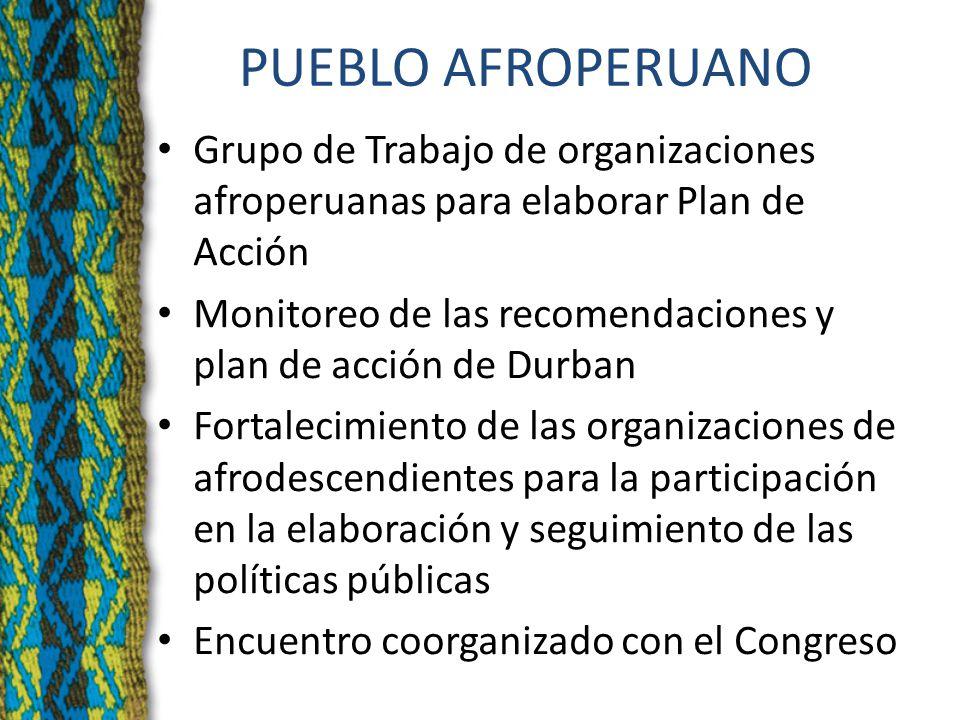 PUEBLO AFROPERUANO Grupo de Trabajo de organizaciones afroperuanas para elaborar Plan de Acción Monitoreo de las recomendaciones y plan de acción de Durban Fortalecimiento de las organizaciones de afrodescendientes para la participación en la elaboración y seguimiento de las políticas públicas Encuentro coorganizado con el Congreso