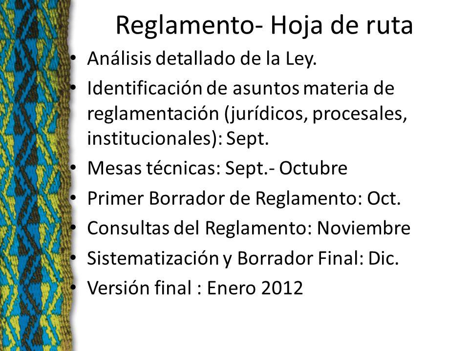 Reglamento- Hoja de ruta Análisis detallado de la Ley.