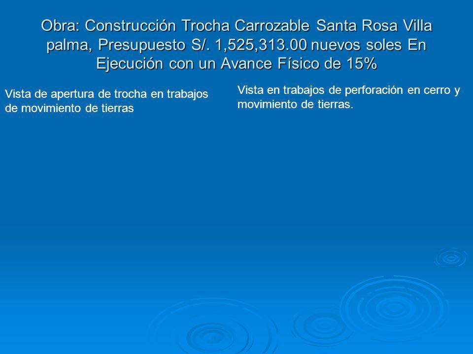 Obra: Construcción Trocha Carrozable Santa Rosa Villa palma, Presupuesto S/. 1,525,313.00 nuevos soles En Ejecución con un Avance Físico de 15% Vista