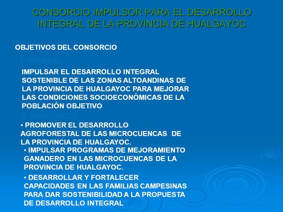 CONSORCIO IMPULSOR PARA EL DESARROLLO INTEGRAL DE LA PROVINCIA DE HUALGAYOC OBJETIVOS DEL CONSORCIO 1. GENERAL IMPULSAR EL DESARROLLO INTEGRAL SOSTENI