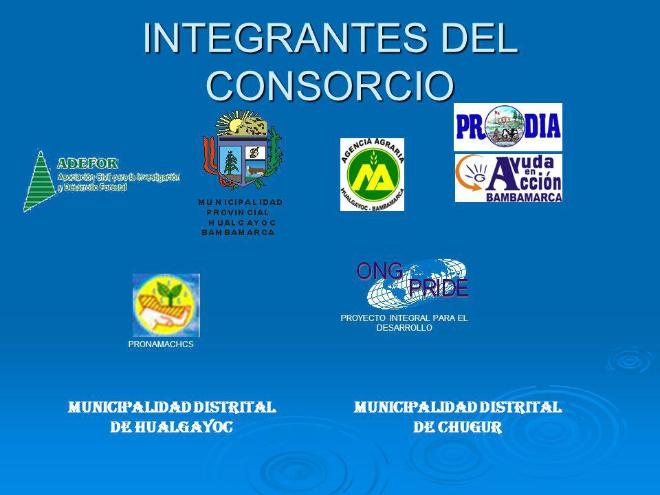 INTEGRANTES DEL CONSORCIO MUNICIPALIDAD DISTRITAL DE HUALGAYOC MUNICIPALIDAD DISTRITAL DE CHUGUR PRONAMACHCS PROYECTO INTEGRAL PARA EL DESARROLLO