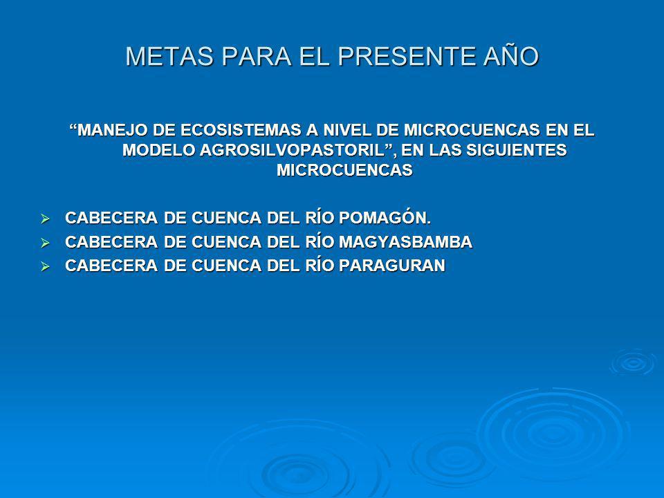 METAS PARA EL PRESENTE AÑO MANEJO DE ECOSISTEMAS A NIVEL DE MICROCUENCAS EN EL MODELO AGROSILVOPASTORIL, EN LAS SIGUIENTES MICROCUENCAS CABECERA DE CU