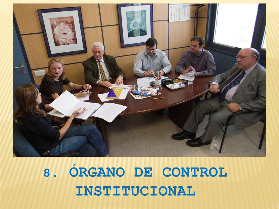 8. ÓRGANO DE CONTROL INSTITUCIONAL