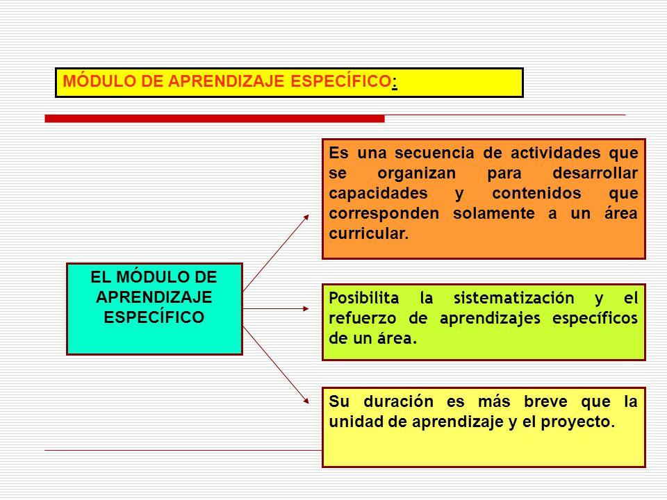 MÓDULO DE APRENDIZAJE ESPECÍFICO: Es una secuencia de actividades que se organizan para desarrollar capacidades y contenidos que corresponden solament