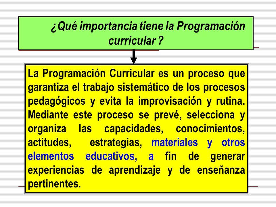 ¿Qué importancia tiene la Programación curricular ? La Programación Curricular es un proceso que garantiza el trabajo sistemático de los procesos peda