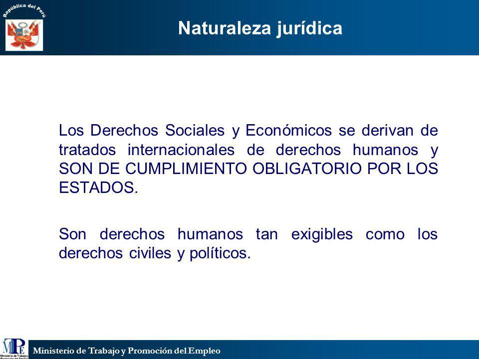 Ministerio de Trabajo y Promoción del Empleo Naturaleza jurídica Los Derechos Sociales y Económicos se derivan de tratados internacionales de derechos