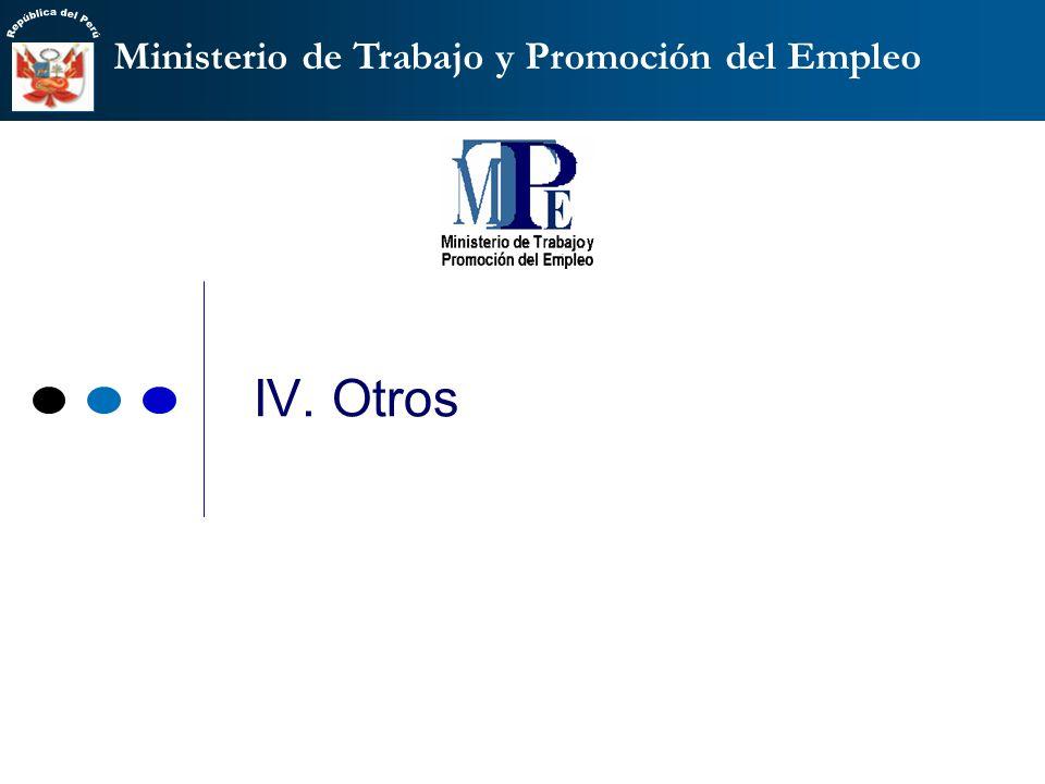 Ministerio de Trabajo y Promoción del Empleo IV. Otros
