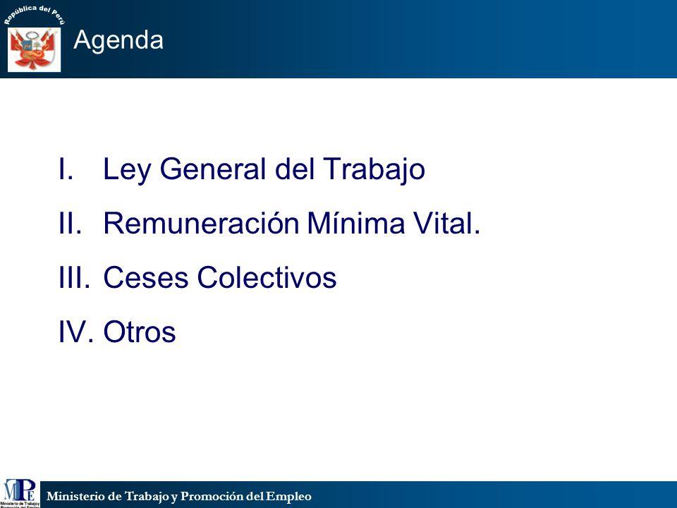 Ministerio de Trabajo y Promoción del Empleo Agenda I.Ley General del Trabajo II.Remuneración Mínima Vital.
