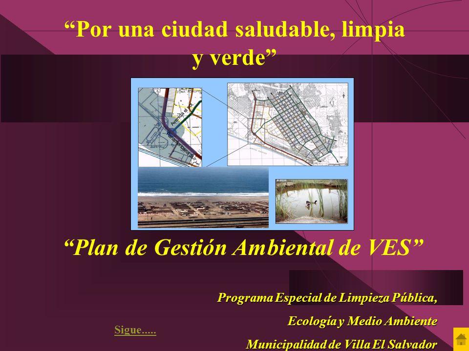 Por una ciudad saludable, limpia y verde Plan de Gestión Ambiental de VES Programa Especial de Limpieza Pública, Ecología y Medio Ambiente Ecología y