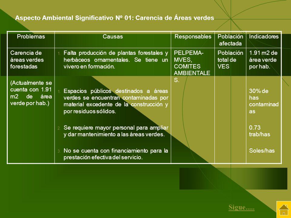 ProblemasCausasResponsablesPoblación afectada Indicadores Carencia de áreas verdes forestadas (Actualmente se cuenta con 1.91 m2 de área verde por hab