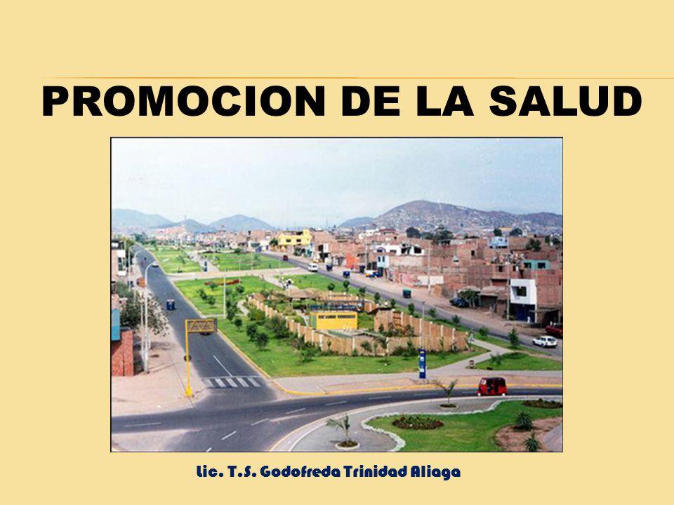 PROMOCION DE LA SALUD MUNICIPIO SALUDABLE FAMILIA Y VIVIENDA SALUDABLE INSTITUCIONES EDUCATIVAS SALUDABLES Lic. T.S. Godofreda Trinidad Aliaga