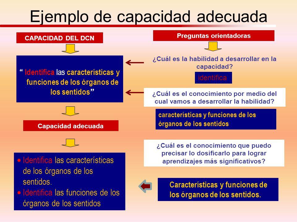 CAPACIDAD DEL DCN Preguntas orientadoras Identifica las características y funciones de los órganos de los sentidos ¿Cuál es la habilidad a desarrollar