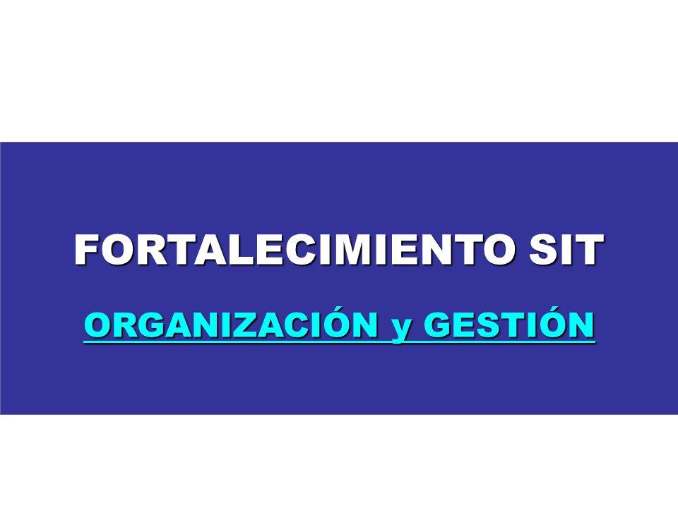 FORTALECIMIENTO SIT ORGANIZACIÓN y GESTIÓN