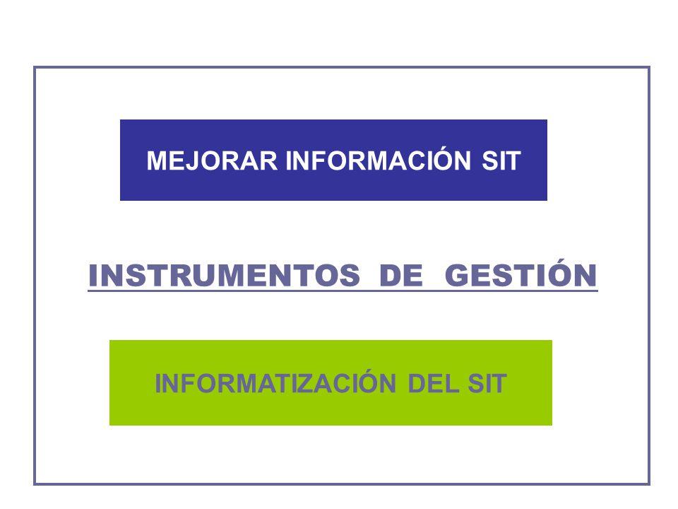 INFORMATIZACIÓN DEL SIT MEJORAR INFORMACIÓN SIT INSTRUMENTOS DE GESTIÓN