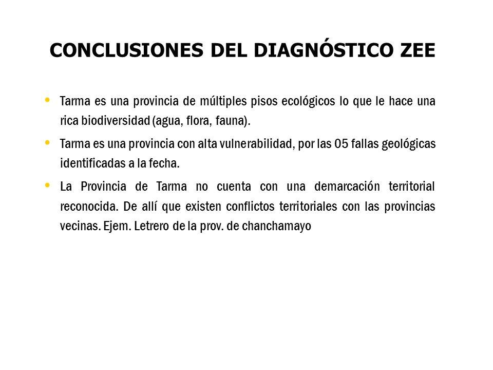 CONCLUSIONES DEL DIAGNÓSTICO ZEE Tarma es una provincia de múltiples pisos ecológicos lo que le hace una rica biodiversidad (agua, flora, fauna). Tarm