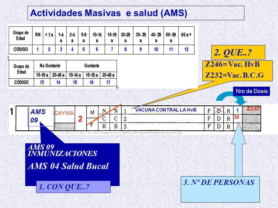 Z246= Vac.HvB Z232=Vac. B.C.G AMS 09 INMUNIZACIONES AMS 04 Salud Bucal....