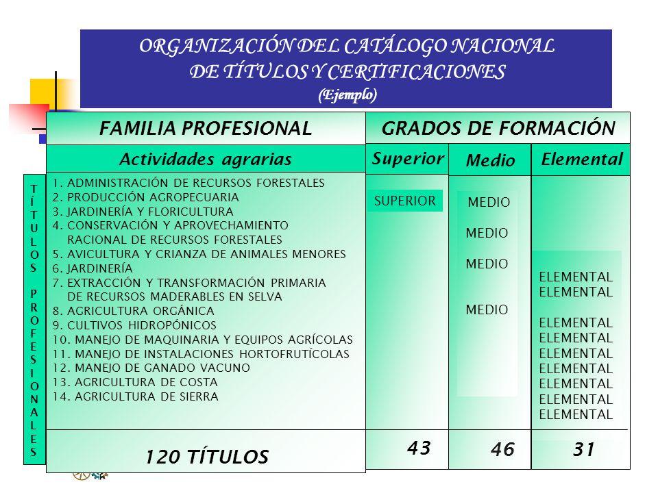 CATÁLOGO NACIONAL DE TÍTULOS Y CERTIFICACIONES 1. Administración y comercio. 2. Actividades agrarias. 3. Actividades marítimo pesqueras. 4. Artes gráf