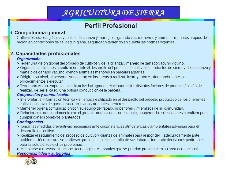 FAMILIA PROFESIONALGRADOS DE FORMACIÓN ORGANIZACIÓN DEL CATÁLOGO NACIONAL DE TÍTULOS Y CERTIFICACIONES (Ejemplo) Superior Medio Elemental 1.