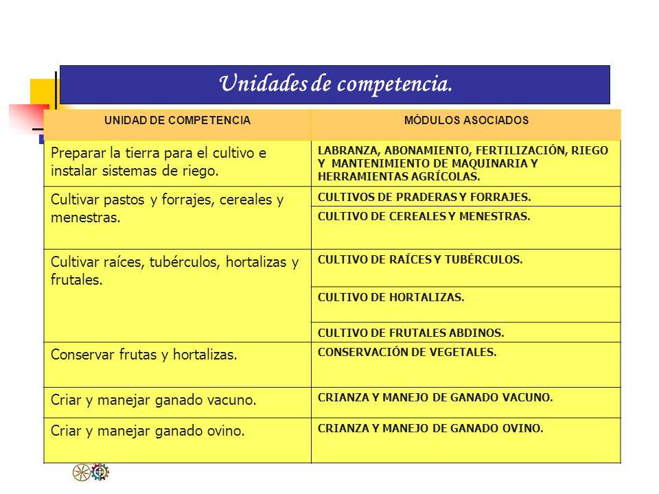 Perfil Profesional 1. Competencia general Cultivar especies agrícolas y realizar la crianza y manejo de ganado vacuno, ovino y animales menores propio