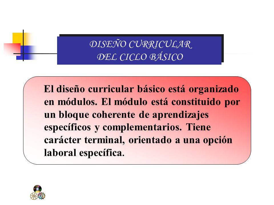 OBJETIVOS DEL CICLO BÁSICO Desarrollar capacidades para ejecutar trabajos de menor complejidad.