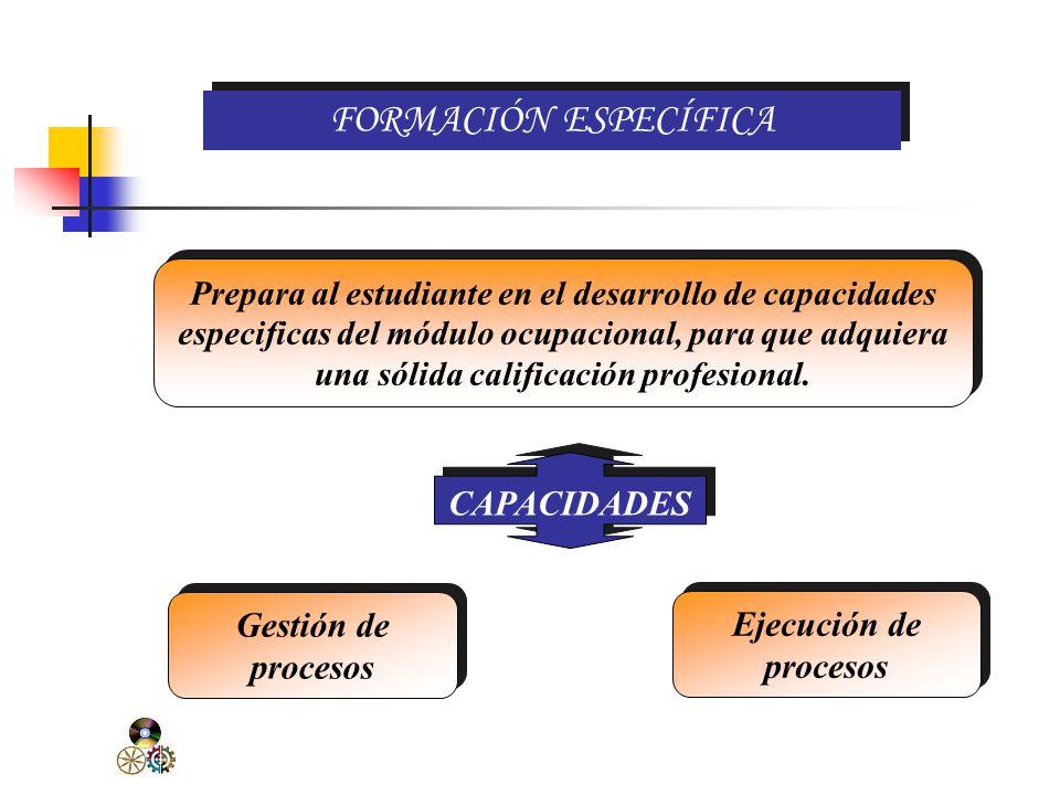 COMPONENTES DEL DISEÑO EN EL CICLO BÁSICO Formación Específica Formación Complementaria Práctica Pre-Profesional Valores y actitudes Ejes transversales TUTORÍA