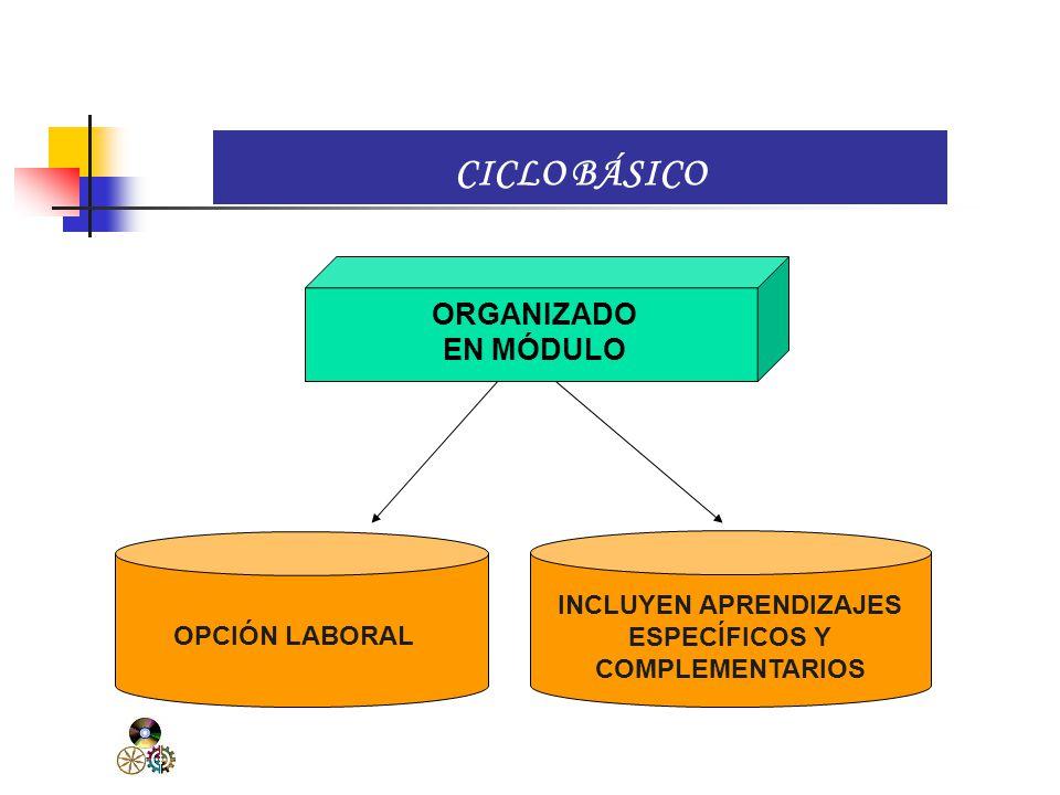 La Educación Técnico-Productiva se organiza en dos ciclos: CICLO MEDIO. Provee al estudiante de las competencias necesarias para el ejercicio de una a