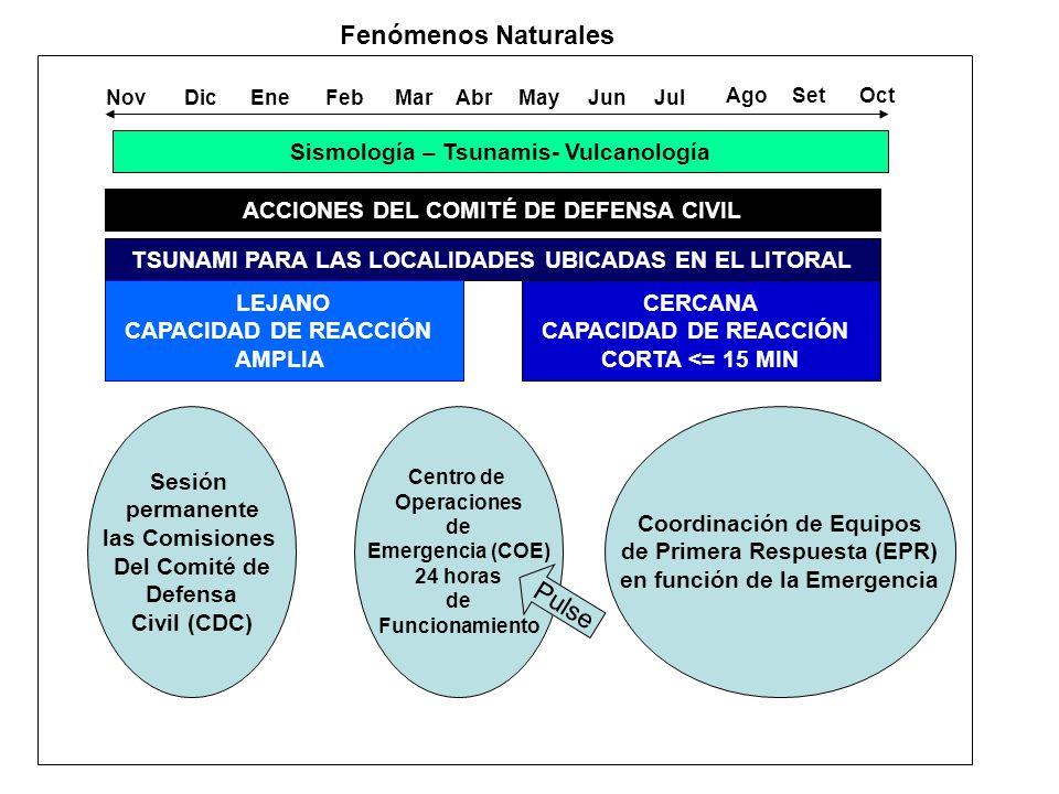 Sismología – Tsunamis- Vulcanología NovDicEneFebMarAbrMayJunJul AgoSetOct Fenómenos Naturales ACCIONES DEL COMITÉ DE DEFENSA CIVIL TSUNAMI PARA LAS LOCALIDADES UBICADAS EN EL LITORAL LEJANO CAPACIDAD DE REACCIÓN AMPLIA CERCANA CAPACIDAD DE REACCIÓN CORTA <= 15 MIN Sesión permanente las Comisiones Del Comité de Defensa Civil (CDC) Centro de Operaciones de Emergencia (COE) 24 horas de Funcionamiento Coordinación de Equipos de Primera Respuesta (EPR) en función de la Emergencia Pulse
