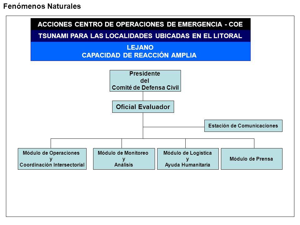 Fenómenos Naturales ACCIONES CENTRO DE OPERACIONES DE EMERGENCIA - COE TSUNAMI PARA LAS LOCALIDADES UBICADAS EN EL LITORAL LEJANO CAPACIDAD DE REACCIÓN AMPLIA Presidente del Comité de Defensa Civil Oficial Evaluador Módulo de Operaciones y Coordinación Intersectorial Módulo de Monitoreo y Análisis Módulo de Logística y Ayuda Humanitaria Módulo de Prensa Estación de Comunicaciones