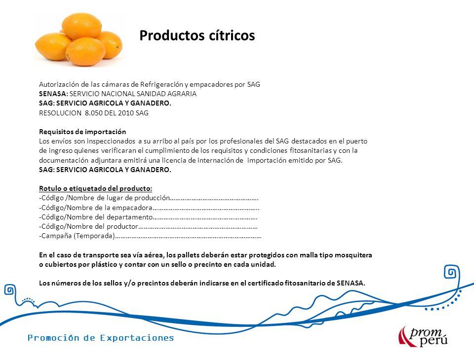 Promoción de Exportaciones Productos cítricos Autorización de las cámaras de Refrigeración y empacadores por SAG SENASA: SERVICIO NACIONAL SANIDAD AGRARIA SAG: SERVICIO AGRICOLA Y GANADERO.