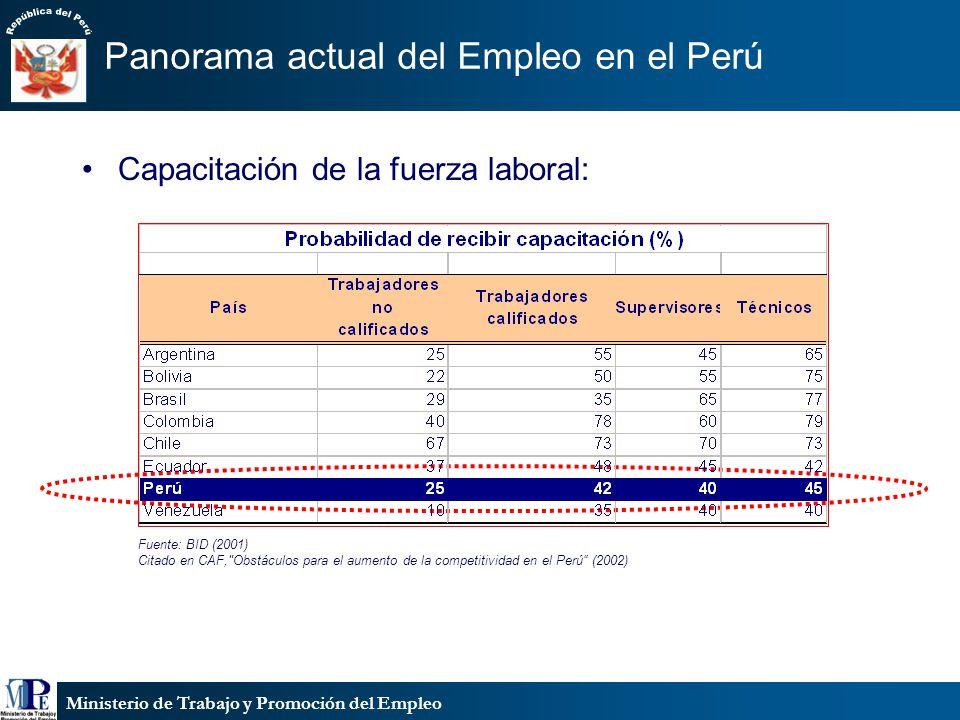 Ministerio de Trabajo y Promoción del Empleo Panorama actual del Empleo en el Perú Capacitación de la fuerza laboral: Fuente: BID (2001) Citado en CAF