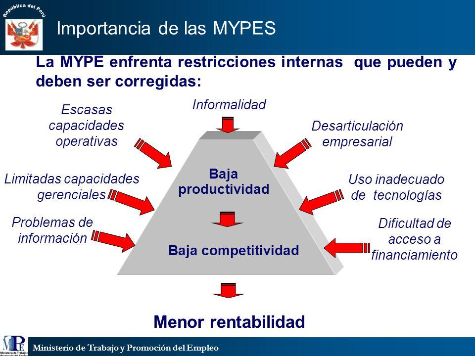 Ministerio de Trabajo y Promoción del Empleo La MYPE enfrenta restricciones internas que pueden y deben ser corregidas: Problemas de información Limit