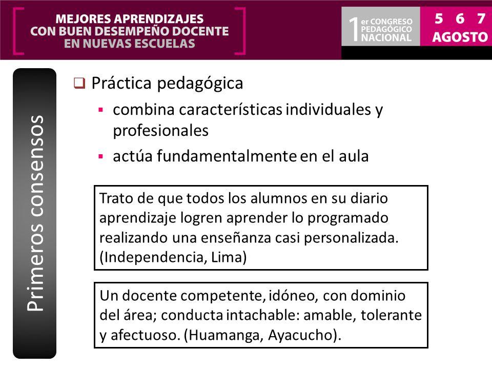 Práctica pedagógica combina características individuales y profesionales actúa fundamentalmente en el aula Primeros consensos Trato de que todos los a