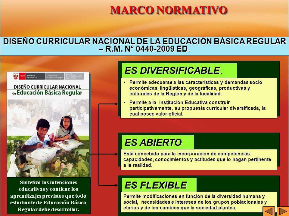 DISEÑO CURRICULAR NACIONAL DE LA EDUCACIÓN BÁSICA REGULAR – R.M. N° 0440-2009 ED. Permite adecuarse a las características y demandas socio económicas,
