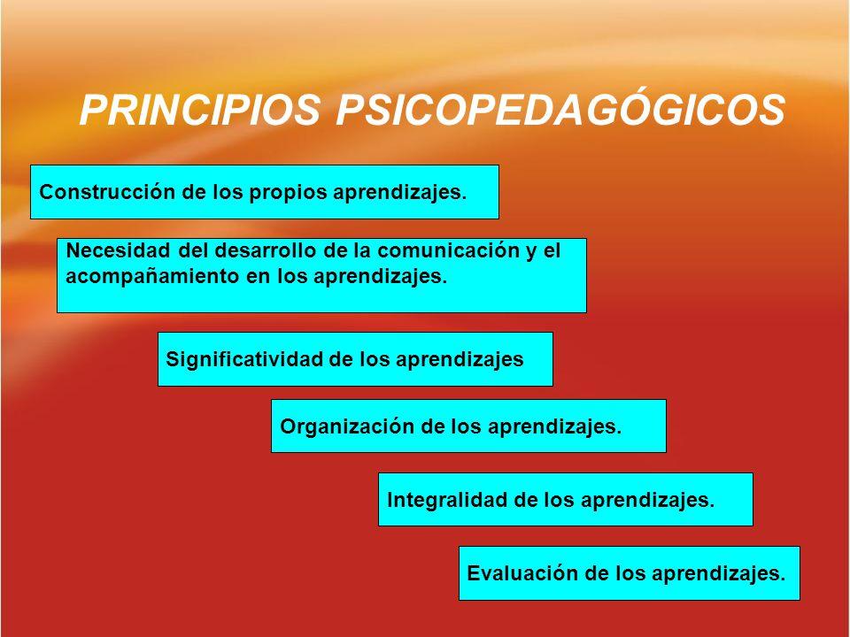 PRINCIPIOS PSICOPEDAGÓGICOS Construcción de los propios aprendizajes. Necesidad del desarrollo de la comunicación y el acompañamiento en los aprendiza