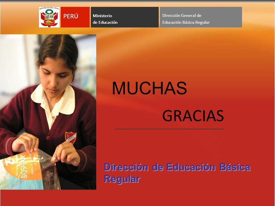 MUCHAS GRACIAS Dirección de Educación Básica Regular Viceministerio de Ministerio de Educación PERÚ Dirección General de Ministerio de Educación PERÚ