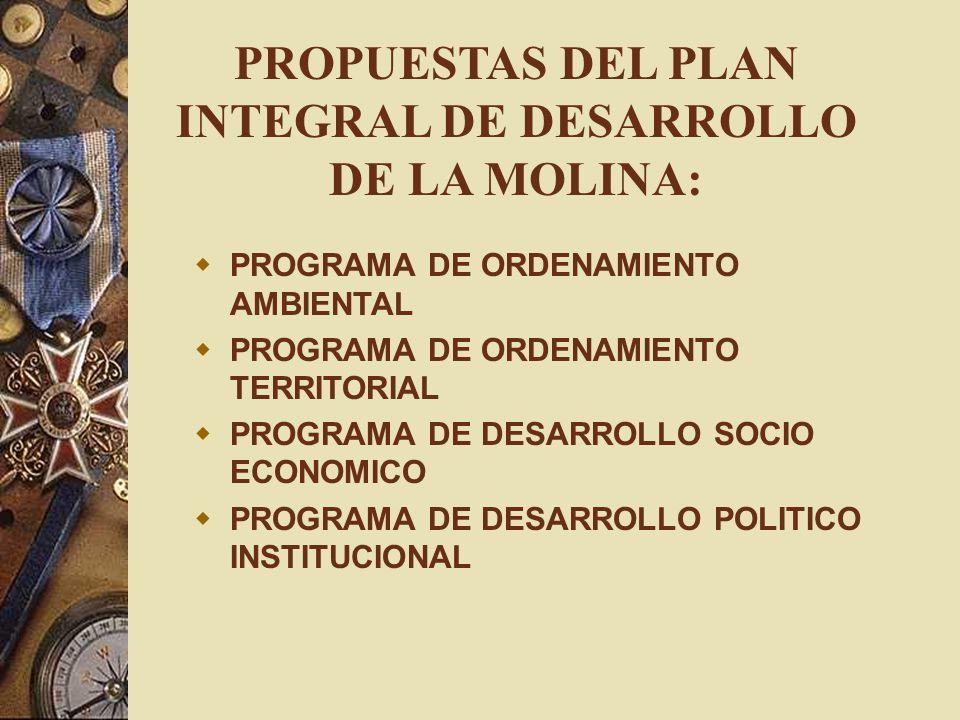 PROPUESTAS DEL PLAN INTEGRAL DE DESARROLLO DE LA MOLINA: PROGRAMA DE ORDENAMIENTO AMBIENTAL PROGRAMA DE ORDENAMIENTO TERRITORIAL PROGRAMA DE DESARROLL