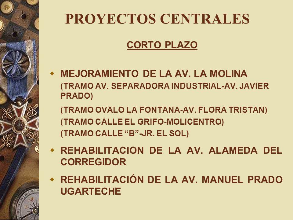 PROYECTOS CENTRALES CORTO PLAZO MEJORAMIENTO DE LA AV. LA MOLINA (TRAMO AV. SEPARADORA INDUSTRIAL-AV. JAVIER PRADO) (TRAMO OVALO LA FONTANA-AV. FLORA