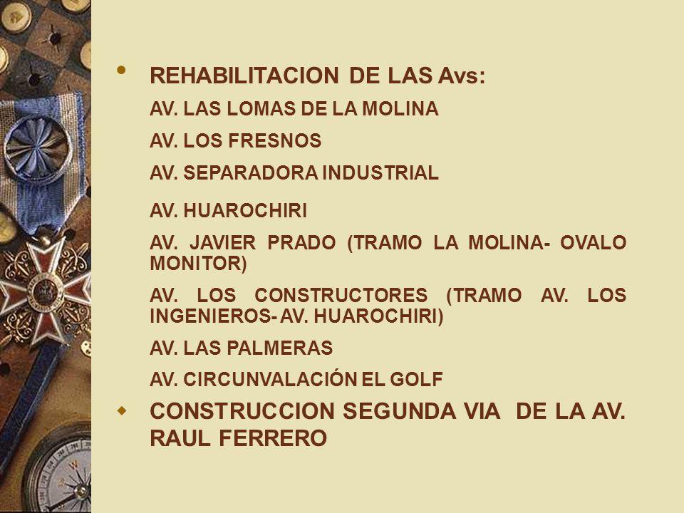 REHABILITACION DE LAS Avs: AV. LAS LOMAS DE LA MOLINA AV. LOS FRESNOS AV. SEPARADORA INDUSTRIAL AV. HUAROCHIRI AV. JAVIER PRADO (TRAMO LA MOLINA- OVAL
