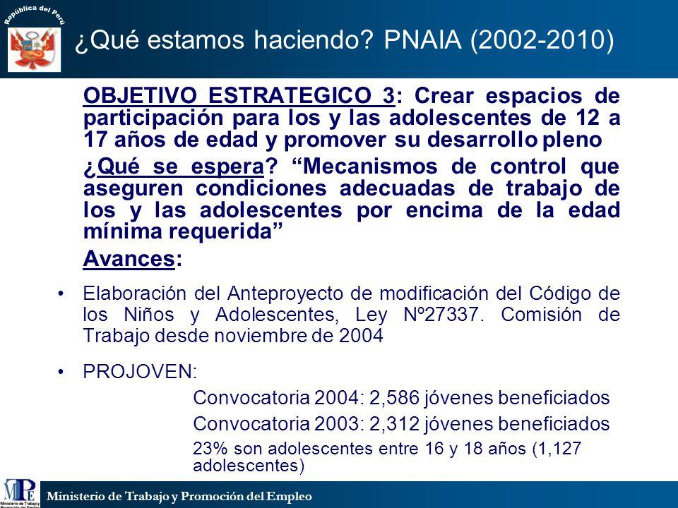 Ministerio de Trabajo y Promoción del Empleo ¿Qué estamos haciendo? PNAIA (2002-2010) OBJETIVO ESTRATEGICO 3: Crear espacios de participación para los