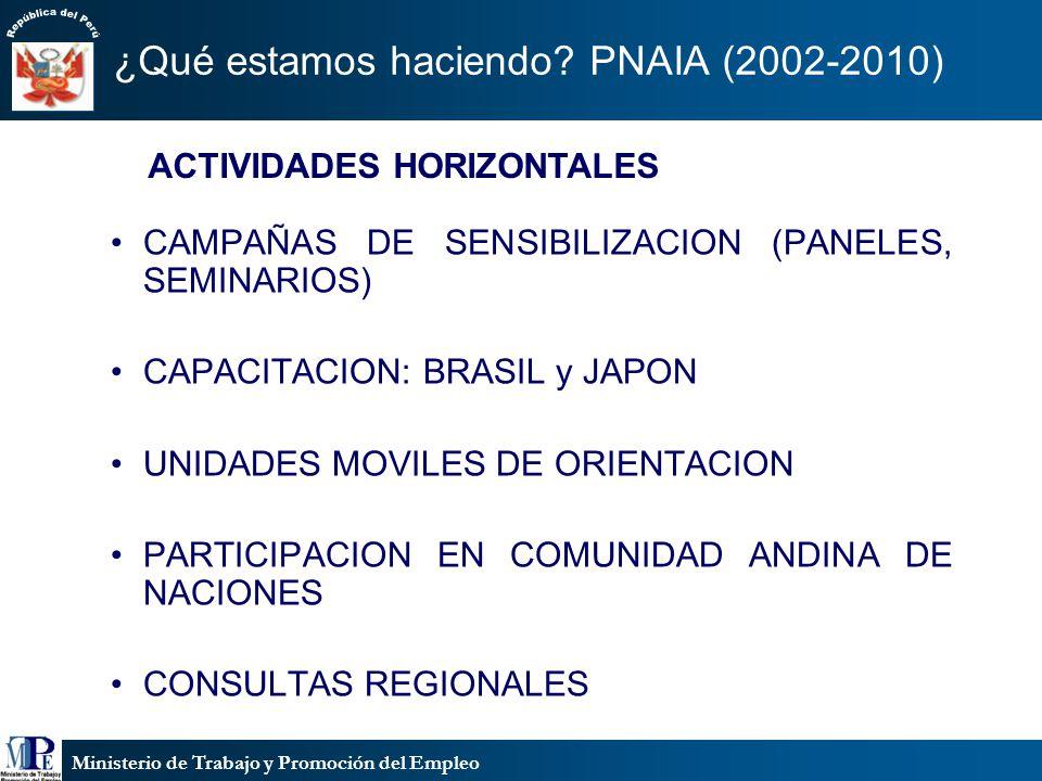 Ministerio de Trabajo y Promoción del Empleo ¿Qué estamos haciendo? PNAIA (2002-2010) CAMPAÑAS DE SENSIBILIZACION (PANELES, SEMINARIOS) CAPACITACION: