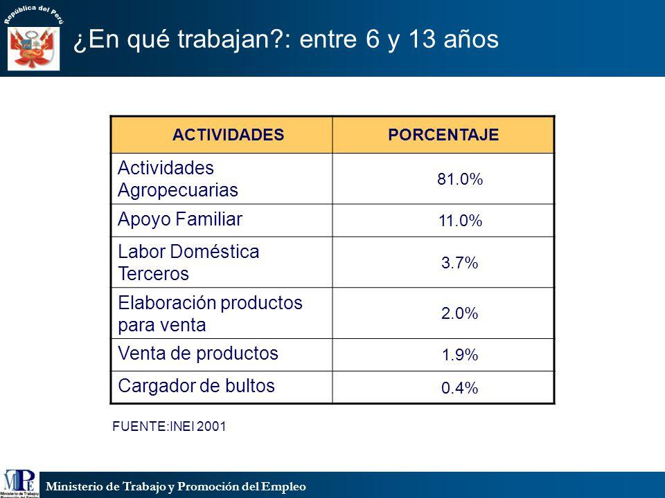 Ministerio de Trabajo y Promoción del Empleo ¿En qué trabajan?: entre 14 y 17 años FUENTE:INEI/2001 ACTIVIDADESPORCENTAJE Peones de labranza 48.70% Ayudantes/servicio 15.4% Cocinero,mozo,albañil 11.8% Comercio 11.6% Trabajo doméstico 8.6% Ambulantes 3.7%