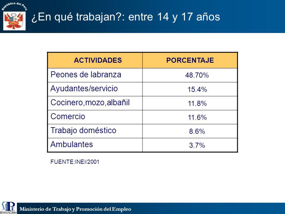Ministerio de Trabajo y Promoción del Empleo ¿En qué trabajan?: entre 14 y 17 años FUENTE:INEI/2001 ACTIVIDADESPORCENTAJE Peones de labranza 48.70% Ay